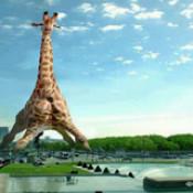 Кумедні факти про Париж